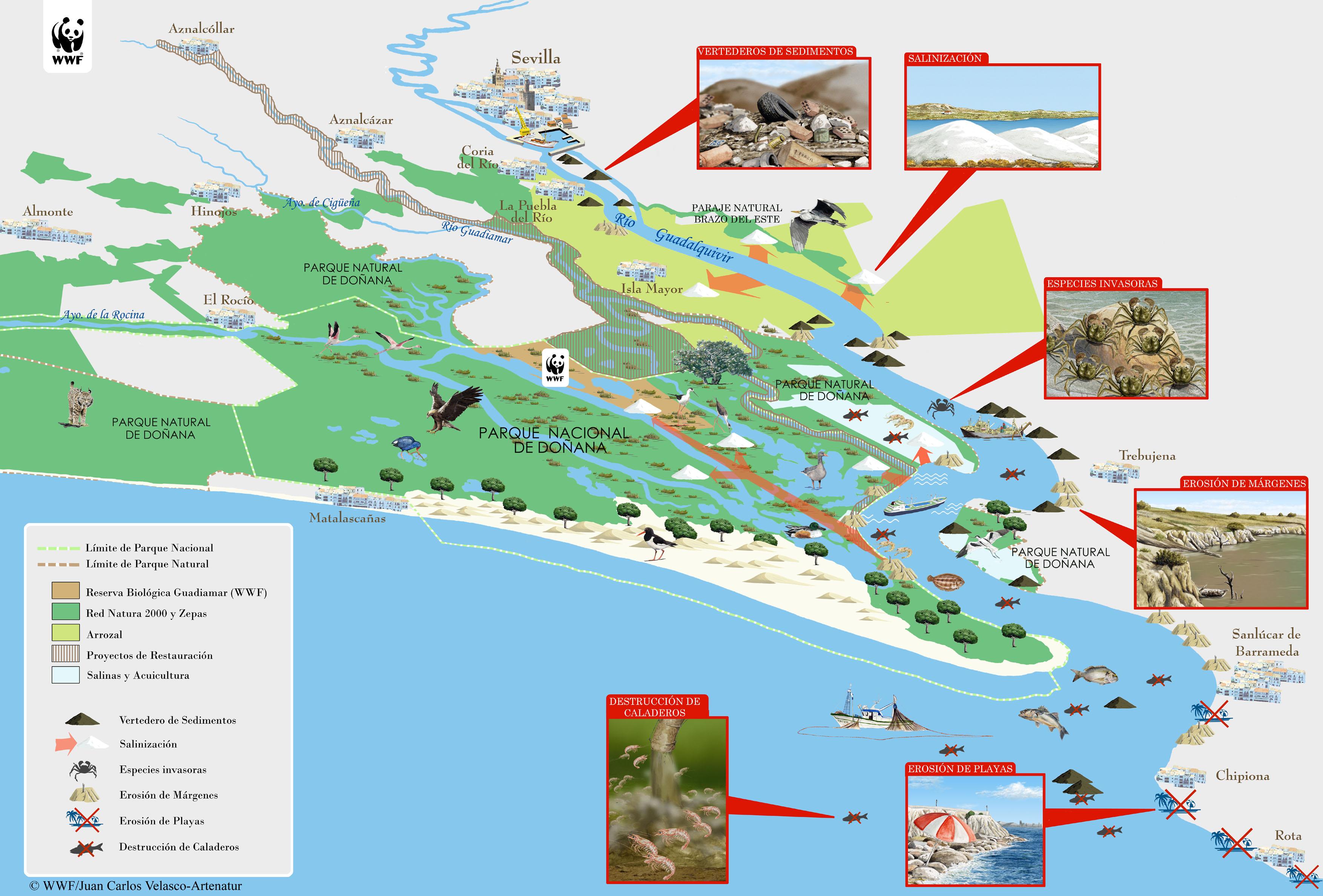 http://awsassets.wwf.es/downloads/copia_de_mapa_de_dragado_del_guadalquivir.jpg