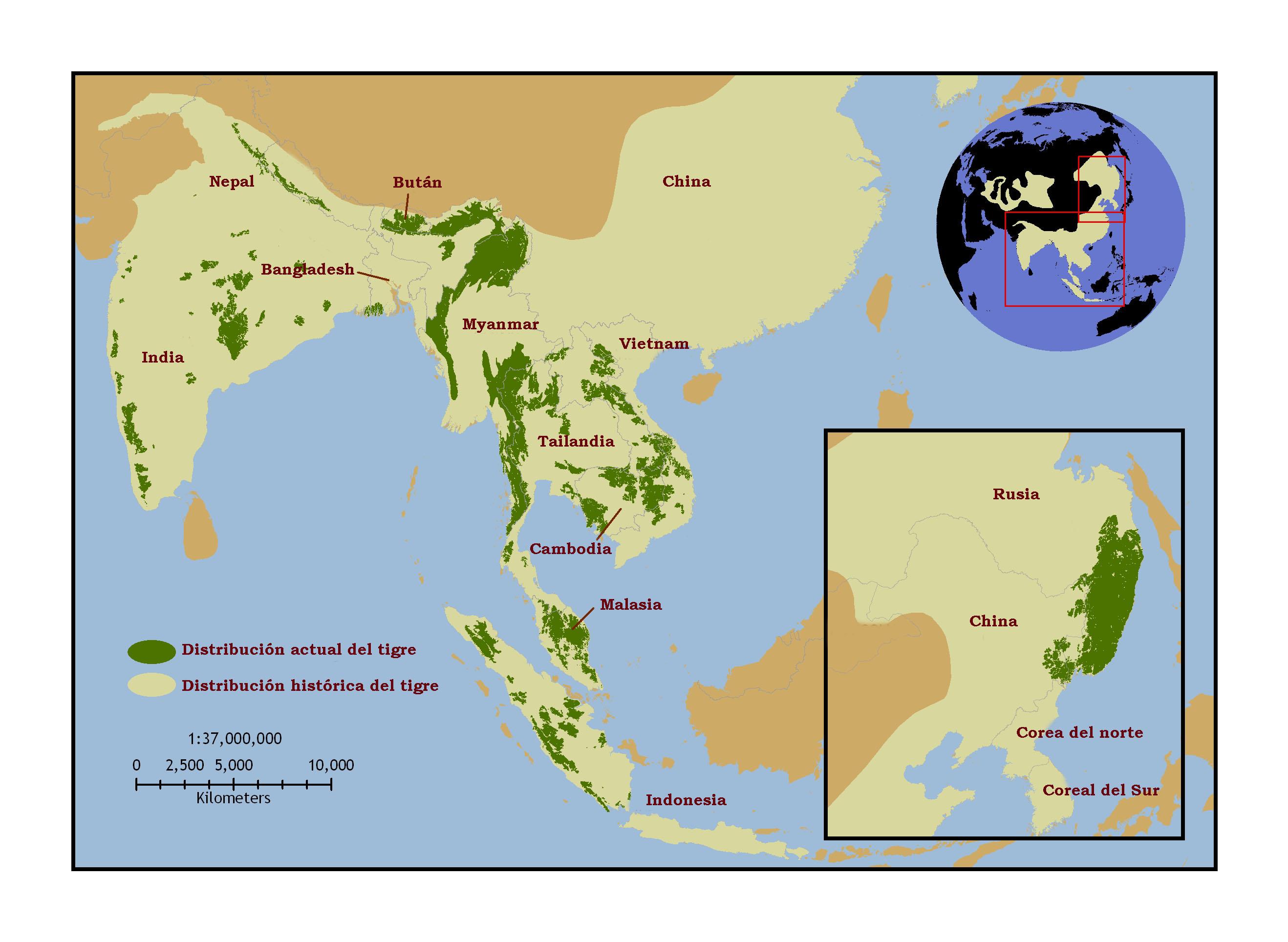 Tailandia en el Mundo Del Tigre en el Mundo