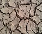 Conservar el suelo es vital y tras el paso del fuego es el principal recurso a proteger