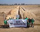 """Protesta de WWF ante la """"cicatriz"""" del proyecto Marismas Occidental de Gas Natural-Fenosa en Doñana, en octubre de 2016."""