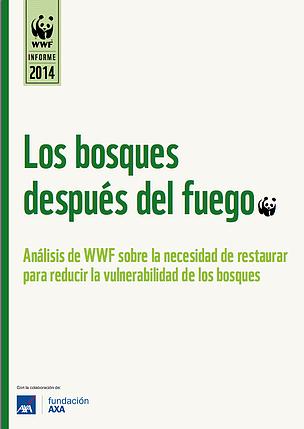 Informe Los bosques después del fuego / ©: WWF
