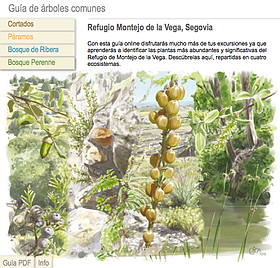 Guía de árboles del Refugio de Montejo / ©: WWF