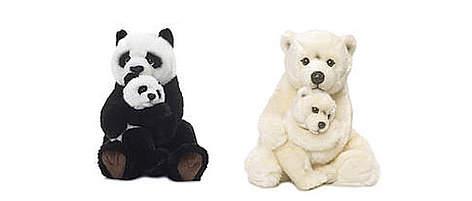 Familia oso panda y oso polar / ©: WWF