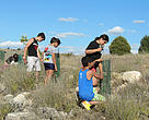 Mantenimiento de restauraciones forestales durante la semana de participación local de Montejo.