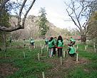 Plantación en Red de 2012, en el Parque Regional del Sureste de Madrid