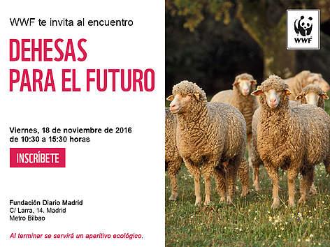 Evento WWF / ©: WWF