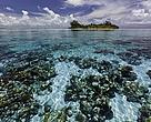 Las ricas aguas del arrecife de Belice, en Centroamérica, están amenazadas por actividades industriales dañinas