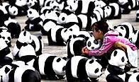 Colabora con WWF / ©: Colabora con WWF